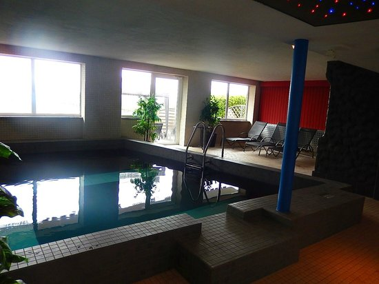 Wellness Hotel Park-Hill: Piscine