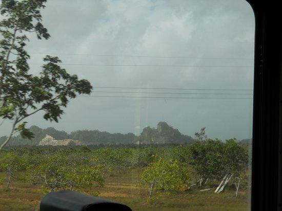 Chukka Caribbean Adventures in Belize: Sleeping Giant seen en route (tallest point is nose)