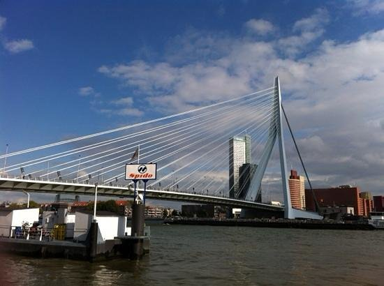 Erasmus Bridge: Erasmus Brug