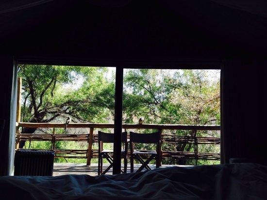 Thakadu River Camp: La bellissima vetrata sul balconcino!