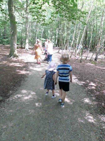 Thorndon Country Park: looking for the Gruffalo