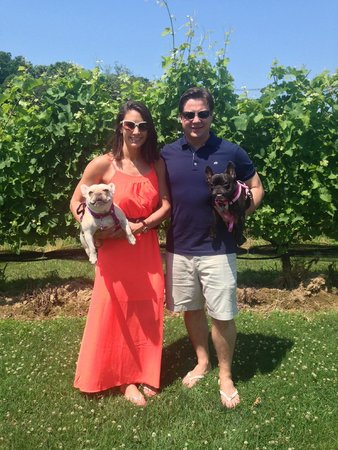 Jamesport Vineyards located minutes from The Harvest Inn (allows dogs)
