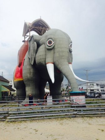 Lucy the Margate Elephant: Lucy