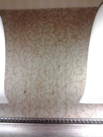 Wingate by Wyndham Tupelo: Mystery wall stain between bathroom lights, reddish brown fluid