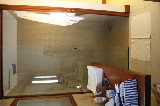 Toko Village: Baño principal, ducha