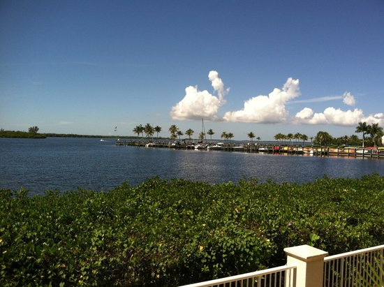 The Westin Cape Coral Resort At Marina Village: View near the pool