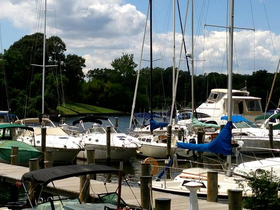 The Point Crab House & Grill: Looking across Mill Creek from restaurant