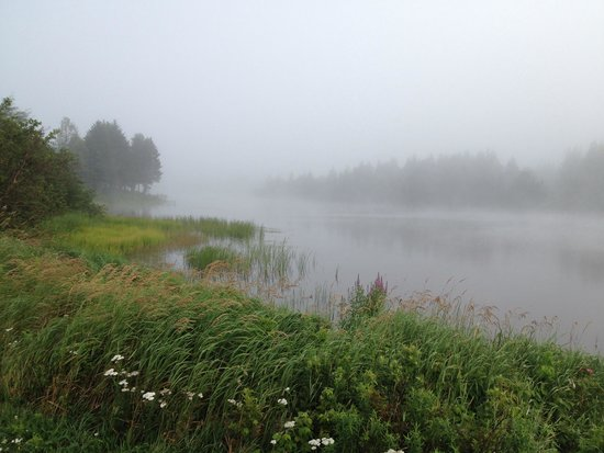 Ponderosa Pines Campground: Misty morning