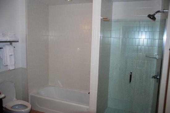 Melia Orlando Suite Hotel at Celebration: Real good shower