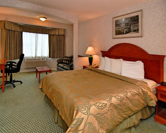 Ramada San Bruno SFO Airport : One KIng Bed Guest Room