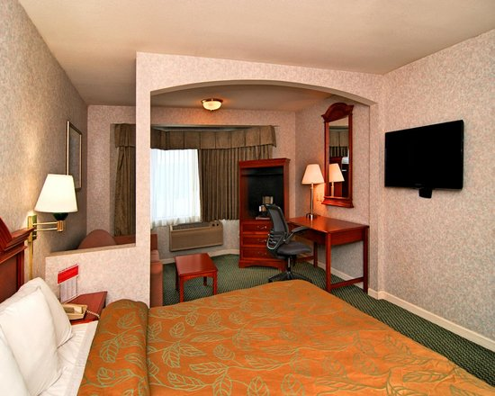 Ramada San Bruno SFO Airport : Minisuite 1 Bed
