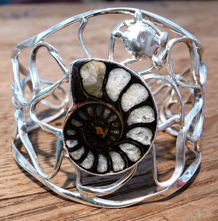 Karma Jewelry Design: Ammonite fossil with crystalization... turtle...pattern of sunlight through water on sandy botto