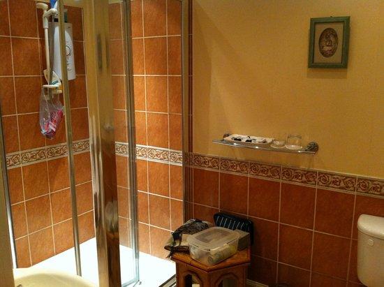 Craiglinnhe House: Shower area