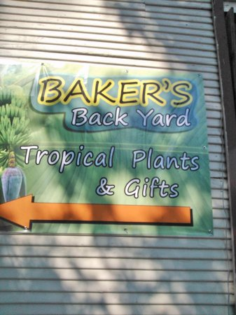 Baker's Back Yard