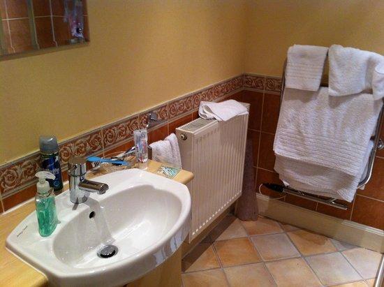 Craiglinnhe House: Hand wash area