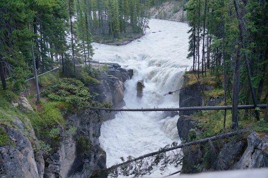 Sunwapta Falls Rocky Mountain Lodge : Sunwapta Falls