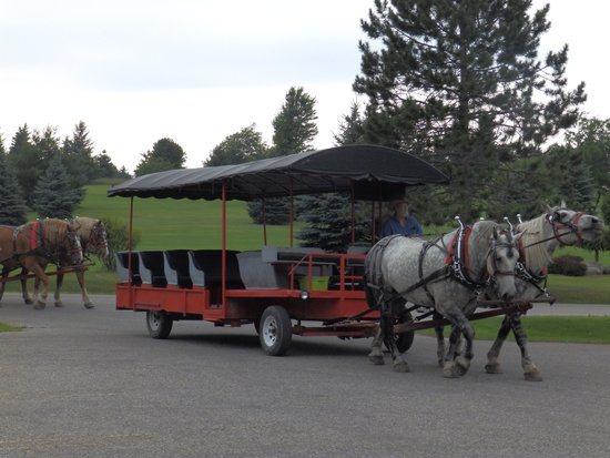 Thunder Bay Resort: Carriage ride to game preserve