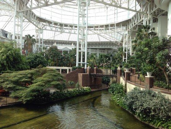 Indoor garden Picture of Gaylord Opryland Resort Gardens