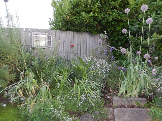 Alder Wood Bistro: Cute Courtyard Covered with Flowers and Plants
