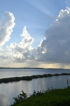 Hawks Cay Resort : Good morning