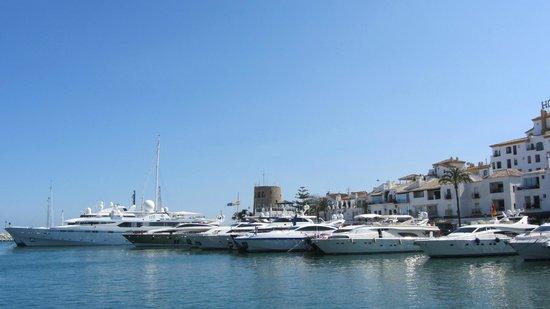 Puerto Banus Marina : excellent