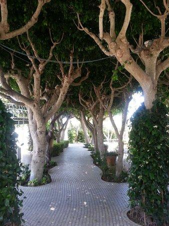Villa Favorita: Den hemmelige hagen