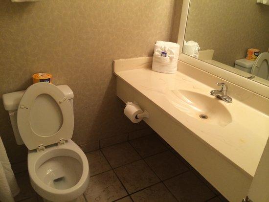 Cabana Shores Hotel: Bath