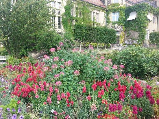 Botanischer Garten Muenchen-Nymphenburg: gardens