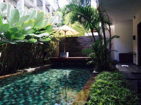 Tegal Sari: Swiming pool at sesapi villa downstairs