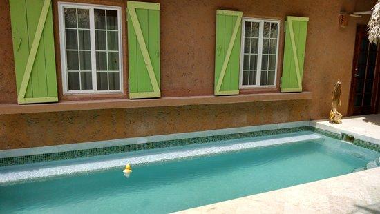 Caye Casa : Quaint pool