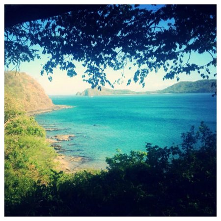 Occidental Papagayo - Adults only: This is the view while walking around the hotel grounds