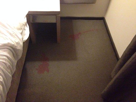 โรงแรมชิเฟลย์อีสเทิร์นครีค: Flithy carpets
