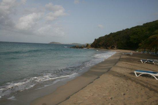 Bluebeard's Beach Club and Villas: Beach
