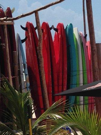 Ixchel Beach Hotel : paddle boards at Fenix lounge