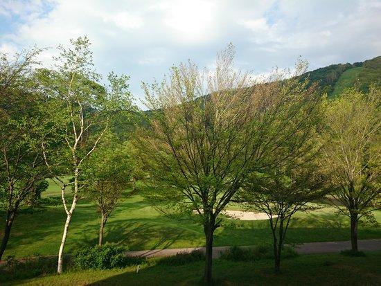 Hotel Tangram : 東側の部屋からの眺め