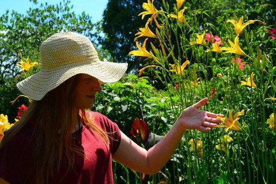 summer picture of atlanta botanical garden atlanta