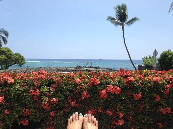 Kona Seaspray: view from my lounge chair