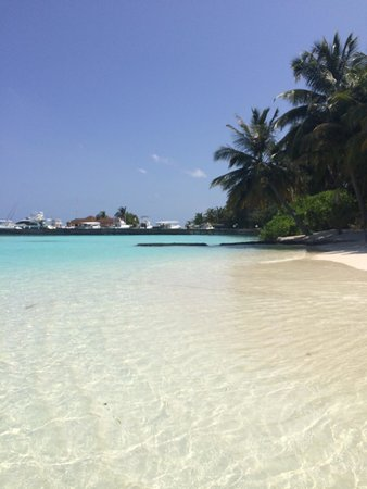 Kurumba Maldives : Beach and white sand