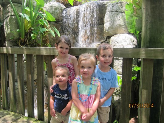Tampa's Lowry Park Zoo: my children