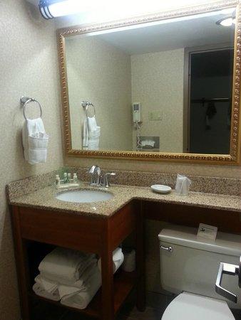 Holiday Inn Ann Arbor / University of Michigan: Bathroom