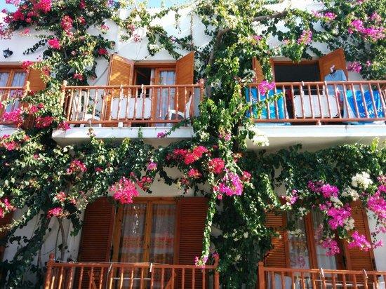 Arian Hotel: Façade de l'hôtel