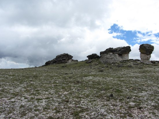 Trail Ridge Road : Mushroom Rocks