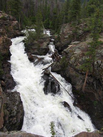 Trail Ridge Road : Adams Falls