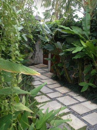Maca Villas & Spa: path to villa
