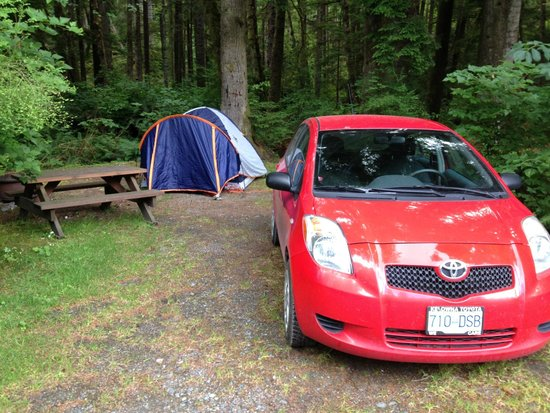 Telegraph Cove Resort: Campsite in the trees