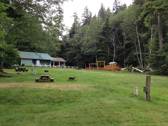 Telegraph Cove Resort: Open space campsites, washroom/showers in background