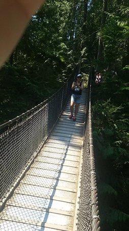 Lynn Canyon Park : Ponte Suspensa
