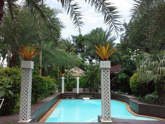 Baan Habeebee Resort : Pool