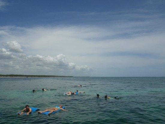 Marinarium Excursions - Reef Explorer : 12