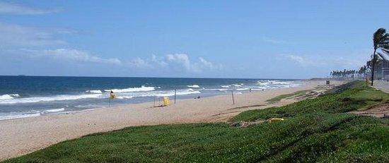 Armacao beach